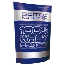 100% WHEY PROTEIN 500 грамм - vanilla